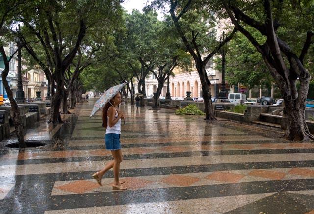 La passante de la pluie @Cjy